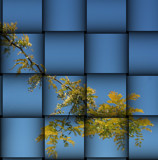 Softness of Autumn: A Weaving by verenabloo, Photography->Manipulation gallery