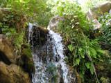 San Yisidro Fall by tijuanatanker, Photography->Waterfalls gallery