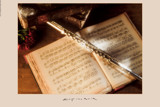 Flute by evertvankuik, Photography->Still life gallery