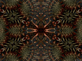 Thinking Of Fall by Joanie, abstract->fractal gallery
