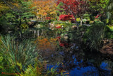 Gibbs Garden Reflection 10 by heidlerr, photography->gardens gallery