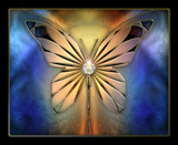 Fractal Grace by nmsmith, abstract->fractal gallery