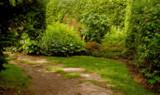 secret garden #2 by annie100, Photography->Landscape gallery