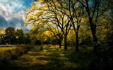 Park Bench by casechaser, photography->manipulation gallery