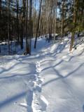 Footprints by m_koempel, Photography->Landscape gallery
