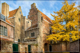 Medieval Houses by corngrowth, photography->architecture gallery