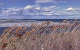 Winter Beach by cynlee, photography->shorelines gallery
