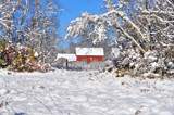 Snowy Barn by fionbharr2000, holidays->christmas gallery