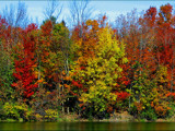 More Fall Colors by dwdharvey, Photography->Landscape gallery