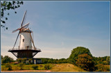 Typical Dutch 3 by corngrowth, photography->mills gallery