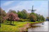 Spring In Middelburg by corngrowth, photography->landscape gallery