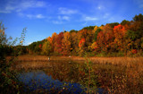 Autumn Capture At Hammond Lake by tigger3, photography->shorelines gallery