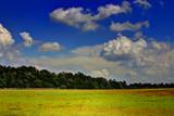 Hayfield by Mvillian, photography->landscape gallery