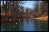 April At St. Francis Pond by Jimbobedsel, Photography->Landscape gallery
