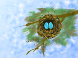 Little Bird Nest by bfrank, illustrations gallery