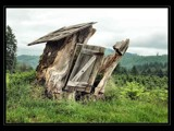 Tree Shack?! by verenabloo, Photography->Castles/Ruins gallery