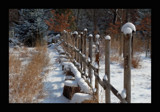 Winter Wonderland 3 by gerryp, Photography->Landscape gallery