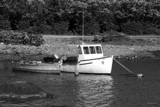 Trappers by elkay, Photography->Boats gallery