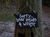 No bear sightings today by redneck20748, Photography->General gallery