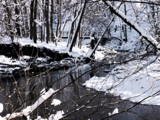 Petrifying Springs Park - River #3 by DeathScytheG, Photography->Landscape gallery
