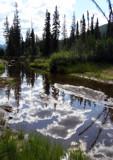Liquid Mirror by jdinvictoria, Photography->Landscape gallery