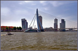 Rotterdam 04 by corngrowth, Photography->Bridges gallery