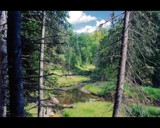 Mauricie 2 by lsdsoft, Photography->Landscape gallery