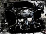 Skull X Bones by rvdb, photography->manipulation gallery