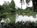 Garden View by jojomercury, photography->landscape gallery