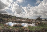 Pond - HDR by elektronist, photography->manipulation gallery