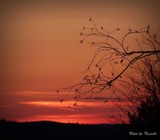 Sunset by picardroe, photography->sunset/rise gallery