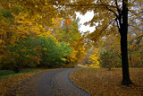 A Stroll Through Autumn by Silvanus, photography->landscape gallery