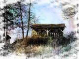 Old Cabin in the Woods by Starglow, photography->general gallery