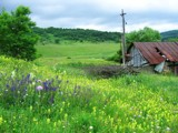 Old Barn by Nekopuff, photography->landscape gallery