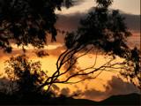 Kaneohe Sunrise by Anita54, Photography->Sunset/Rise gallery