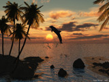 Dolphin by Popaj, Computer->Landscape gallery