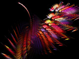 Dysfunctional By Choice by Hottrockin, Abstract->Fractal gallery