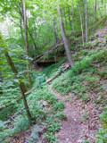 Pogue Creek Canyon T... by Pistos