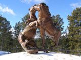 Fighting Stallions by Gergie, Photography->Sculpture gallery