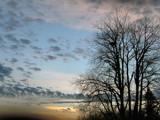 Sunset Series: # 5 Eagles or Hawk? by verenabloo, Photography->Skies gallery