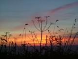 Cornish Sunset by CaptainHero, Photography->Sunset/Rise gallery