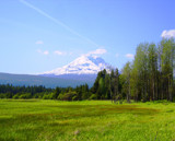 Mt. Adams meadow by busybottle, Photography->Mountains gallery