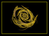 Golden Apophysis Rose by J_272004, Abstract->Fractal gallery