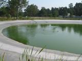 Bu�aquinho Park.5 by apofix, photography->water gallery