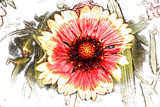 Sketchy Flower 3 by Eubeen, photography->manipulation gallery