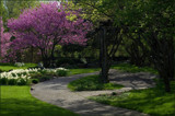 The Biblical Gardens - Reworked by tigger3, Photography->Gardens gallery