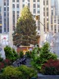 Christmas in New York City by Zava, holidays->christmas gallery