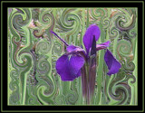 Abstractly Purpled ! by verenabloo, abstract gallery