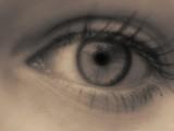Beautiful Eye by SnoF, photography->macro gallery