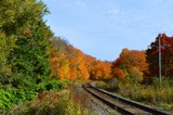 """""""2017 Fall Colours in Northern Ontario"""" by icedancer, photography->nature gallery"""